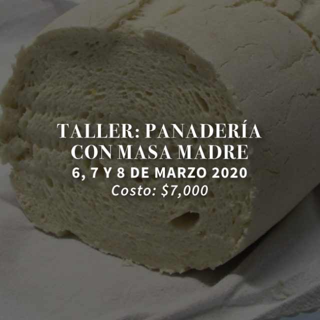 http://masamadre.com.mx/wp-content/uploads/2019/12/Masa-Madre_talleres-2020-02-panaderia-con-masa-madre-web-640x640.jpg