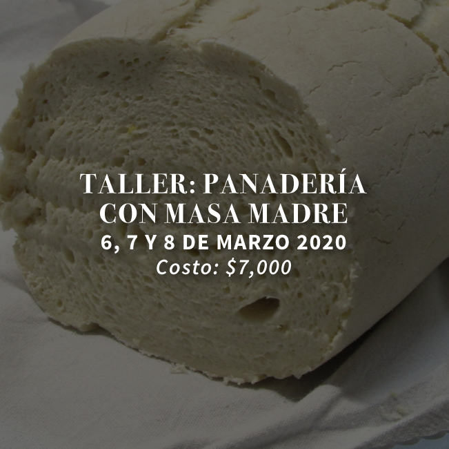 http://masamadre.com.mx/wp-content/uploads/2019/12/Masa-Madre_talleres-2020-02-panaderia-con-masa-madre-web.jpg